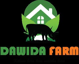 dawida farm 1